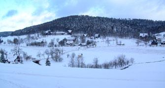 Rehefeld im Winter